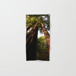 Redwood Tree Tops Hand & Bath Towel