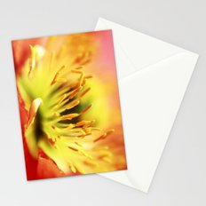 Sorry... Stationery Cards