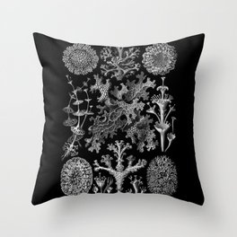 Lichens(Lichenes) by Ernst Haeckel Throw Pillow