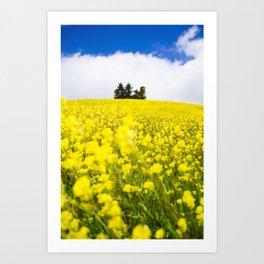 Flower Power in Langhe region Art Print