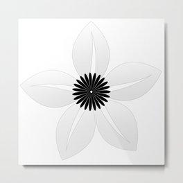 Cute Sheer Jasmin Flower Metal Print