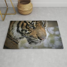 Determined Tiger by Reay of Light Rug