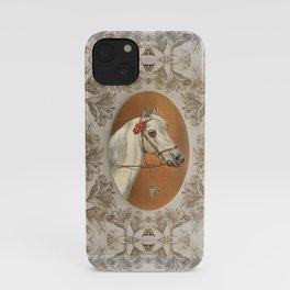 Arabian Horse portrait iPhone Case