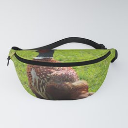 Common Pheasant Donegal Ireland Fanny Pack