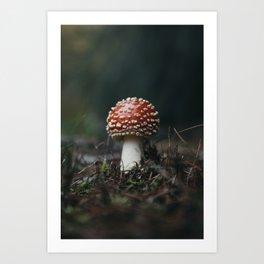 Fairy House Toadstool Art Print