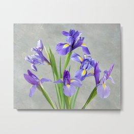 Purple Iris Flowers Metal Print