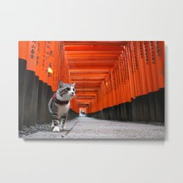 Cat to walk the Fushimi Inari Metal Print