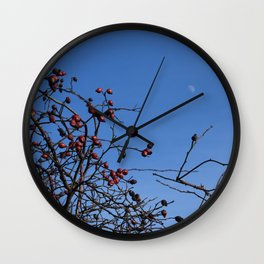 Rose hip berries and blue sky Wall Clock