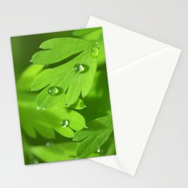 Spring Morning 412 Stationery Cards