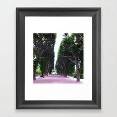 Paris Jardin des Plantes Framed Art Print