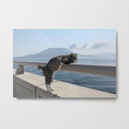 Sea cat Metal Print