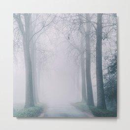 Mist and Mystery II Metal Print