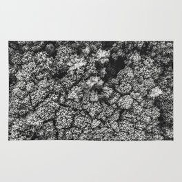 Forest from the bird view Rug