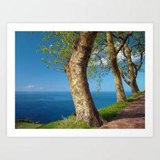 Trees overlooking the ocean Art Print