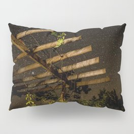 The Night Sky in Costa Rica Pillow Sham
