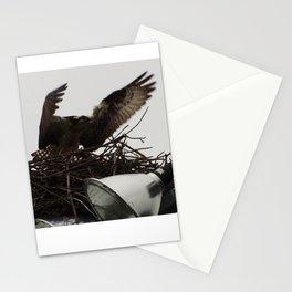 Osprey female- Arnprior 2017 Stationery Cards