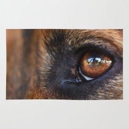 Close-up of a black dog eye Rug