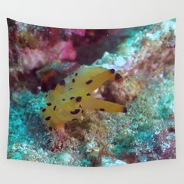 Thecacera pacifica Wall Tapestry