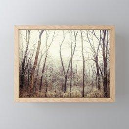 Winter Woods #1 Framed Mini Art Print