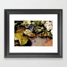 Just Rocks  Framed Art Print