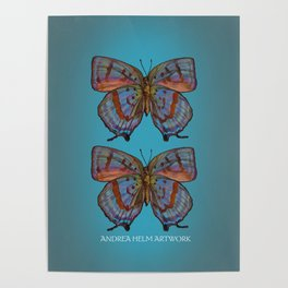 Oakblue Arhopala Hercules Butterfly - Mint Green, Lilac, and Peach Poster