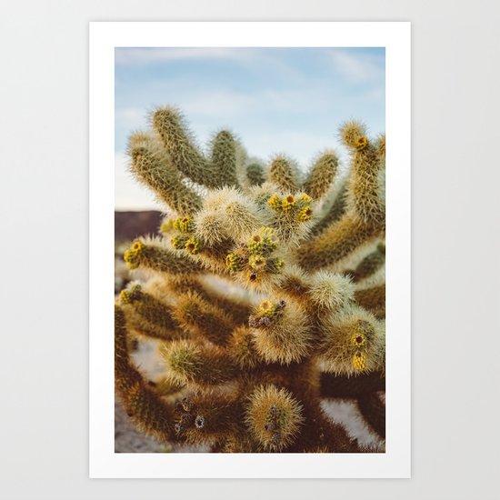 Cholla Cactus Garden IV Art Print