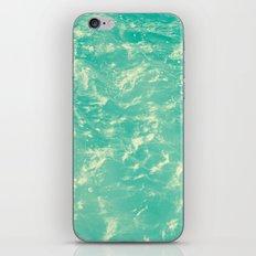 263 iPhone & iPod Skin