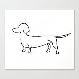 Doxie Canvas Print