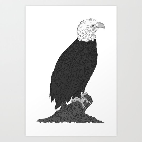 American Bald Eagle B/W Art Print