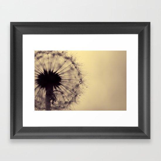 dusk - dandelion Framed Art Print