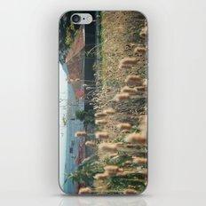 autumn weed iPhone & iPod Skin