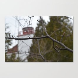 Dyers Bay  Canvas Print