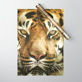 Face of Tiger Wrapping Paper