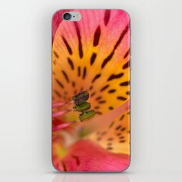 Peruvian Lily Macro iPhone Skin
