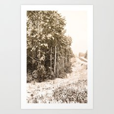 Winter Roadside Art Print