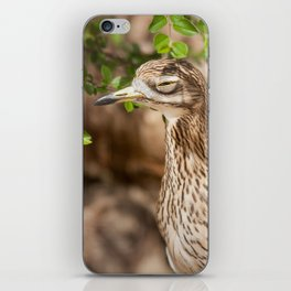 Not sure if serious.. iPhone Skin