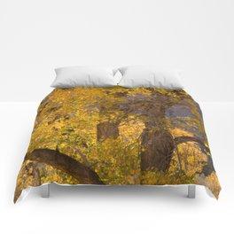 Glowing Cottonwood Comforters