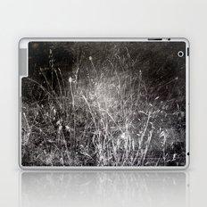Nature  1  Laptop & iPad Skin