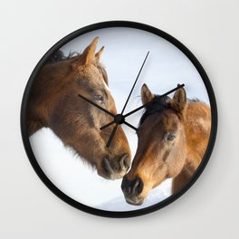 Modern Horse Photo in Color Wall Clock