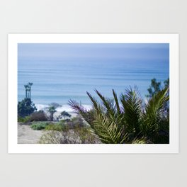 Ocean view in Capistrano Beach Art Print