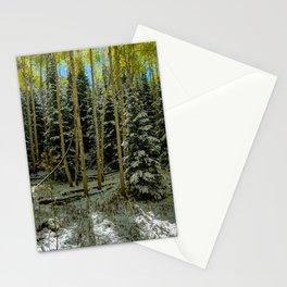 Colorado Autumn Snowstorm Stationery Cards