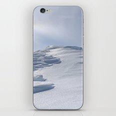 The Top iPhone & iPod Skin