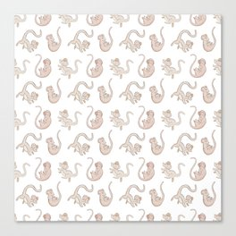 Cute Falling Field Mouse Pattern Canvas Print