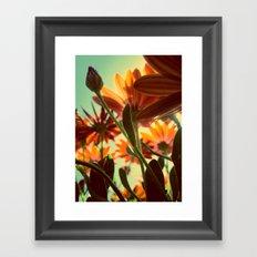 Flowers Underneath Framed Art Print