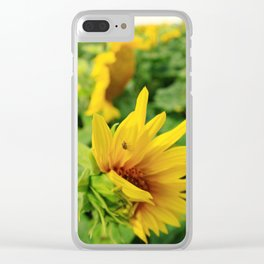 Sunflower 19 Clear iPhone Case