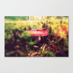 To Be Small, You Must Be Aware of Giants Canvas Print
