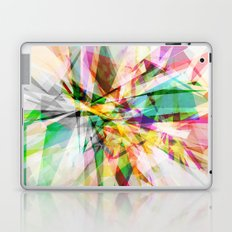 Graphic 13 Laptop & iPad Skin