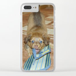 Little puppy biting a sandal Clear iPhone Case