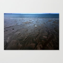 Low Tide at Hibiscus Coast Canvas Print