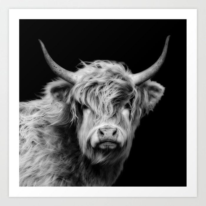 Highland cow black and white art print